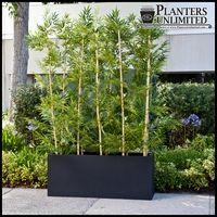 Bamboo Grove Privacy Screen in Modern Fiberglass Planter 48in.L x 12in.W x 72in.H, Outdoor Rated