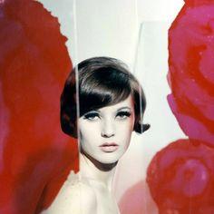 Rose Tinted - Guy Bourdin
