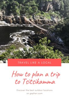 A helpful guide to help you plan an exciting trip to Tsitsikamma, Eastern Cape. Tsitsikamma is a top destination along South Africa's famous Garden Route. Most Beautiful Beaches, Beautiful Places To Visit, Cool Places To Visit, Surfing Destinations, Top Destinations, Tsitsikamma National Park, Like A Local, Africa Travel, Outdoor Travel