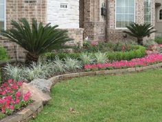 Front Yard Landscaping Idea - love those palm tree things... wonder if they'd grow in VA though.