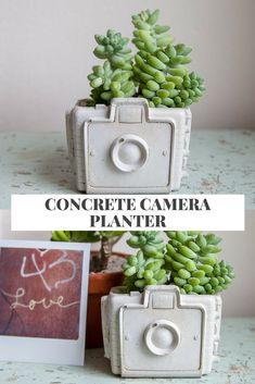 I love this concrete retro camera planter. It's perfect for succulents. #concrete #camera #retro #planter #ad #flowerpot #cement