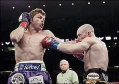 Boxing DVDs — Saul Canelo Alvarez Career Boxing DVD http://boxingdepot.net/products/juan-manuel-marquez-career-set