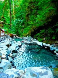 twilleger hot springs | Terwilliger Hot Springs, Oregon, I was prego so I couldnt go sit in then at the time though.