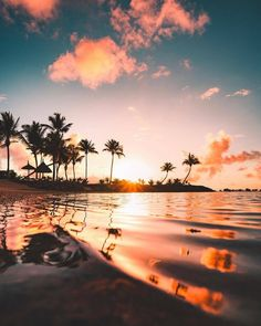 Watching each ripple in the ocean bend the palm tree and cloud reflections was mesmerizing. I think this is one of the things that… Types Of Photography, Landscape Photography, Nature Photography, Sunset Wallpaper, Nature Wallpaper, Beautiful Sunset, Beautiful Places, Beautiful Morning, Mauritius Island