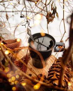 Autumn Cozy Autumn Tea, Autumn Cozy, Autumn Garden, Autumn Fall, Autumn Aesthetic, Christmas Aesthetic, Cozy Aesthetic, Tree Photography, Autumn Photography