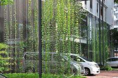 using nature to create car parks Landscape And Urbanism, Urban Landscape, Landscape Design, Vertical Green Wall, Vertical Planting, Green Facade, Pergola, Green Architecture, Facade Design