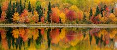 Panoramic image of Canadian Autumn Landscape (Ontario) | World ...