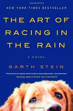 "There is a reason ""The Art of Racing in the Rain"" is on the New York Times Best Sellers list and has won too many awards to list. It is a captivating, moving book. ""Fetch"" it off the bookshelves now!"