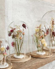 Dried flowers in clay are nice in your interior and you can easily make them yourself! - Dried flowers in clay are nice in your interior and you can easily make them yourself!