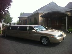 Limos in Dublin Meath by AKP Chauffeur Drive offers luxurious limo hire in Meath Ireland. Voted best limousine hire service in Dublin Stretch Limo, Wedding Car Hire, Mercedes E Class, Party Bus, Dublin Ireland, Car Rental, Buses, Champagne, Gold
