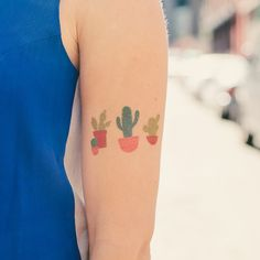 Who doesn't like a set of succulents? Alyssa Nassner's Cacti is a perfect…