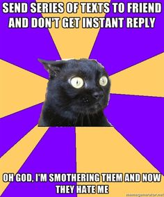 anxiety cat. Lol! That's me!!!