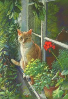 Fantasy art animals Life is part of Fantasy Animals Etsy - Eye Spy Cat and Geranium, soft pastel pencil painting by Petra Brown I Love Cats, Crazy Cats, Cute Cats, Cat Drawing, Painting & Drawing, Pencil Painting, Photo Chat, Pastel Pencils, Animal Paintings