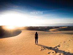 Breathe. Feel how the fresh morning breeze fills your lungs. Welcome to the dunes. 27°44'44''N 15°34'28''W  #daylights #latituddevida #latitudeoflife #breathe #respirar #sunrise #amanecer #dunes #dunas #hasselblad