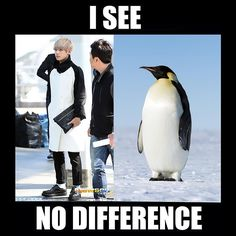 "On #worldpenguinday we pay homage to our favorite ""penguin.""  (Oh and to make this somewhat educational we are jokingly reminded of the word ""doppelganger"" which means 'someone who looks just like you but isn't a twin.' V's doppelganger is an emperor penguin.)   #doppelganger #penguins #bts #v #taetae #kimtaehyung #kpop #vocabulary #learnenglish #efl #esl"
