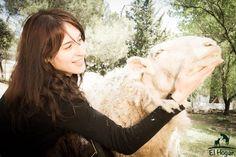 Noemí A.H www.elhogarprovegan.org