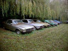 my heart grieves Mercedes Benz R Class, Mercedes Slc, Junkyard Cars, Daimler Benz, Abandoned Cars, Barn Finds, Vehicles, Muse, Concept