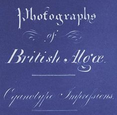 The Surprising Subject of the First Book of Photographs