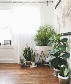 Modern apartment garden featuring Convivial + West Elm planters via Convivial Production: https://www.etsy.com/shop/ConvivialProduction