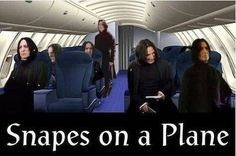 The Best, Funniest, and Most Ridiculous Harry Potter Memes to Come Out of J. Rowling's Wizarding World Snape Harry Potter, Theme Harry Potter, Harry Potter Jokes, Harry Potter Pictures, Severus Snape, Ridiculous Harry Potter, Alan Rickman, Found Out, Hilarious