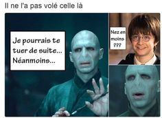 Harry et Voldemort 😂 Harry Potter Jokes, Harry Potter Anime, Harry Potter World, Photoshop Memes, Meme Photo, Saga, Minions, Funny Memes, Hilarious