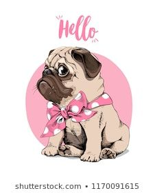 Adorable beige puppy Pug with a bow tie on a pink background. Hello – lettering … Adorable beige puppy Pug with a bow tie on a pink background. Humor card, t-shirt composition, hand drawn style print. Pug Kawaii, Pug Tattoo, Baby Pugs, Pug Art, Pug Puppies, Jolie Photo, Art Graphique, Pug Love, Cute Baby Animals