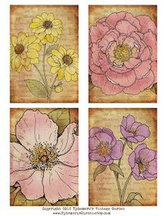Here's a printable sheet of flower cards for you. These would make lovely tags, greeting card embellishments or journal cards. Vintage Labels, Vintage Ephemera, Vintage Paper, Decoupage, Paper Tags, Flower Images, Mail Art, Flower Cards, Collage Sheet