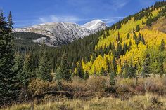 Quandry Peak 14,265'. Ten Mile Range