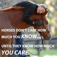 """""""Horses don't care how much you know until they know how much you care."""" - Pat Parelli"""
