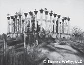Eudors Welty, Ruins of Windsor.   themorris.org