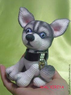 Хаски Хатико - чёрно-белый,хаски,собака,собачки,собачка,щенки,щенок,щеночек