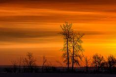 Morning Light by Chris Lockwood, via 500px