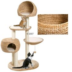 Perhaps once my current cat tree falls apart.