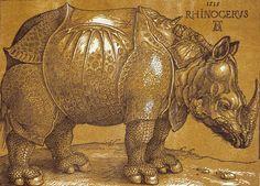 Giclee Print: The Rhinoceros, 1515 Pen and ink, wash. by Albrecht Dürer : Albrecht Durer, Rhinoceros, Canvas Prints, Art Prints, Animal Prints, British Museum, Metropolitan Museum, Heritage Image, New Art