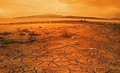 Blog noticias,actualidad,y mucho más: El calentamiento global aumentará la actividad mic...