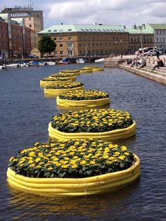 Floating garden in Gothenburg, Sweden. Sweden Stockholm, Gothenburg Sweden, Places Around The World, Around The Worlds, Beautiful World, Beautiful Places, Bósnia E Herzegovina, Kingdom Of Sweden, Floating Garden