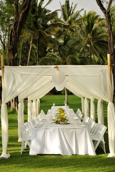 Bamboo Dining Canopy