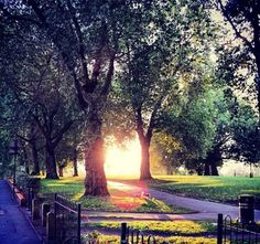 A gorgeous Hackney sunrise.