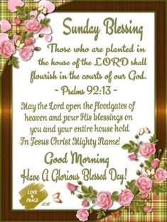 Discover recipes, home ideas, style inspiration and other ideas to try. Blessed Sunday Morning, Sunday Morning Quotes, Sunday Wishes, Have A Blessed Sunday, Happy Sunday Quotes, Blessed Quotes, Morning Blessings, Good Morning Greetings, Morning Prayers