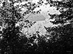 #fineartphotography #naturephotography #travelphotography #bergen #norway #troldhaugen #edvardgrieg #artistsonpinterest #photographersonpinterest #blackandwhitephotography