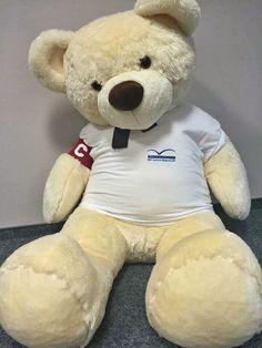 25 XI Dzień Pluszowego Misia! Z tej okazji przedstawiamy wam najmilszego misia w EMC Szpitale! #mis #teddybear #naszmis #maskotka #emc #wbiurze #office