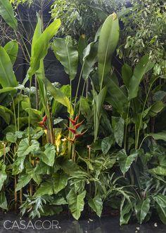 CASACOR São Paulo - Kalil Ferre Paisagismo - Foto: Evelyn Müller Tropical Backyard Landscaping, Tropical Garden Design, Tropical Gardens, Small Garden Landscape, Landscape Plans, Front Yard Garden Design, Minimalist Garden, Most Beautiful Gardens, Outdoor Gardens