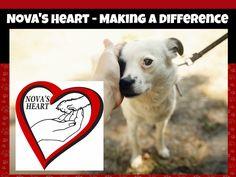 Nova's Heart - Making A Difference in Shreveport/Bossier City, Louisiana