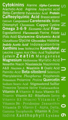 Moringa oleifera. The only botanical to contain 90+ nutrients. Does your vitamin compare? Click the picture to learn more.