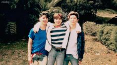 that's IKON — forkjh: tall, small, tall Ikon Kpop, Kim Jinhwan, Ulzzang Fashion, Pop Group, T Shirts For Women, Couple Photos, Boys, Dandelions, Couple Shots