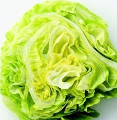 Conventional wisdom suggests this salad staple is nutritionally bankrupt. But as it turns out, half a head of iceberg lettuce has significantly more alpha-carotene, a powerful disease-fighting antioxidant, than either romaine lettuce or spinach. Holistic Nutrition, Health And Nutrition, Lettuce Benefits, Healthy Foods To Eat, Healthy Recipes, Strawberry Nutrition Facts, Diabetic Menu, Kinds Of Salad, Fresh Fruits And Vegetables