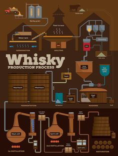 Whisky distillery production process infographics