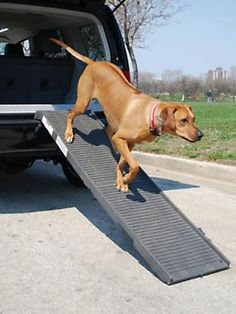 Give your furry friend a boost with a Deluxe Petstep Ramp | Solutions.com #Pets #Dogs #Auto #Ramp