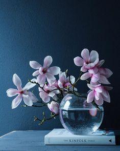 Flowers Photography Still Life Pictures 65 Ideas Ikebana Flower Arrangement, Flower Vases, Flower Arrangements, Deco Floral, Arte Floral, My Flower, Flower Art, Amazing Flowers, Beautiful Flowers