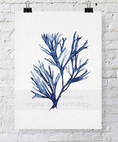 Seaweed Wall Art Print in Denim Blue - Blue Coral Art - Blue Seaweed Print - Sea Life Art Print - Coral Art Print - Seaweed V in Denim Coral Wall Art, Coral Walls, Arte Coral, Art Blue, Sea Life Art, Watercolor Print, Watercolour Painting, Watercolours, Coral Blue